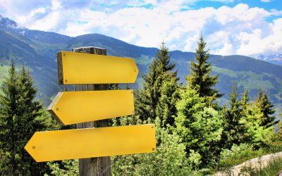 Trilhas de aprendizagem e descobertas na EaD: vivências e experiências de uma trajetória